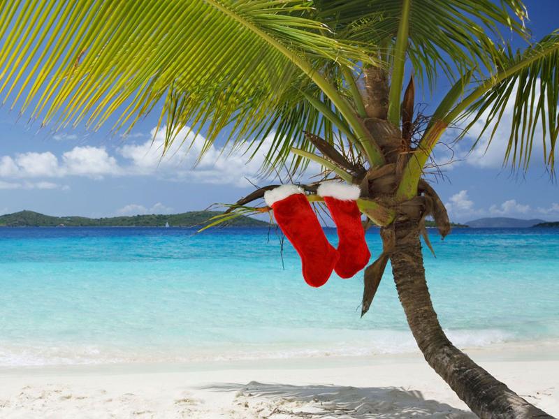 Куба или Занзибар: какой остров выбрать для новогоднего путешествия - Журнал Виасан