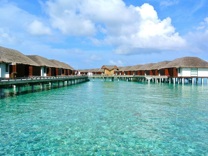 Мальдивы или Сейшелы: что вам подойдет больше?